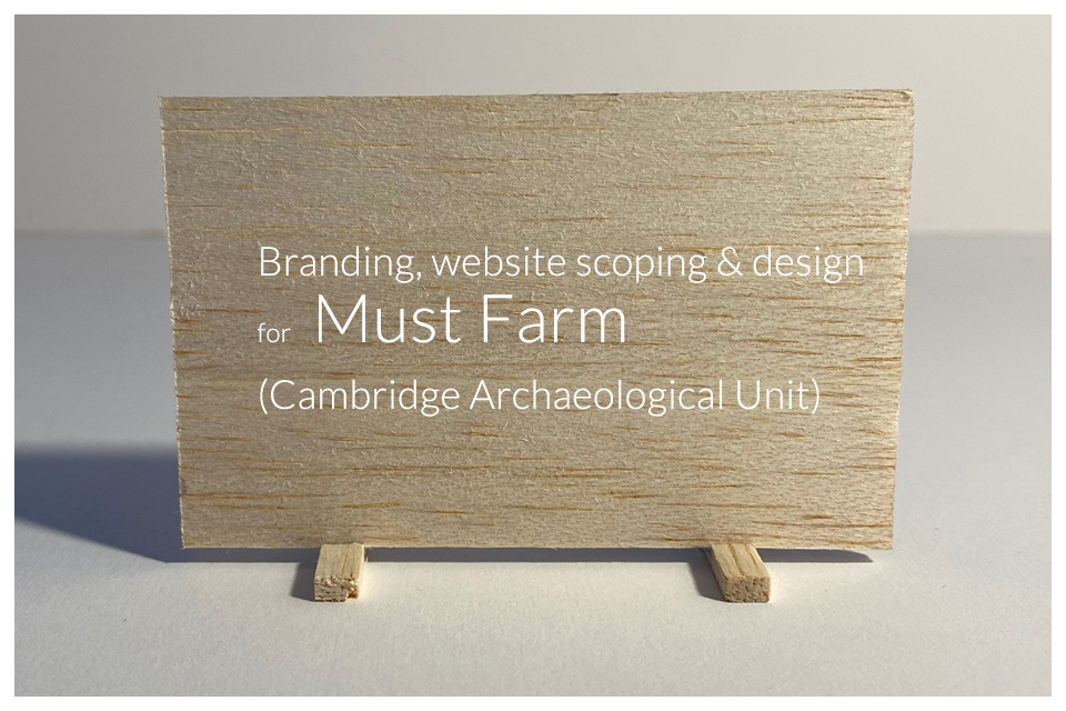 Branding, website scoping and design for Must Farm (Cambridge Archaeological Unit)